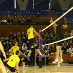 CS Volei Municipal Zalău (foto, în galben) au câştigat fără emoţii meciul de debut în noul campionat / Foto Dan Bodea