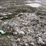 FOTO/ Clujenii confundă toaletele cu tomberonul