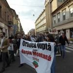 Petse 100 de orădeni au protestat la Oradea