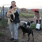 Floyd,   câinele salvat de la Centrul de ecarisaj din Cluj,   la Chinteni,   în braţele lui Ralf,   colaborator german al Asociaţiei pentru Protecţia Animalelor Cluj/Foto: Dan Bodea