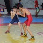 Sportivii de la CS Satu Mare-Cetate Ardud au dominat competiția,   reuşind să obţină șapte medalii,   trei de aur,   una de argint și trei de bronz