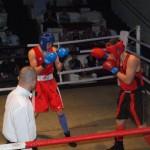 C. N de box pentru tineret, de la Oradea, n-a fost de bun augur, până acum, pentru pugiliştii sătmăreni
