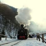 FOTO Revelion pe roți,   cu Mocanița de pe Valea Vaserului