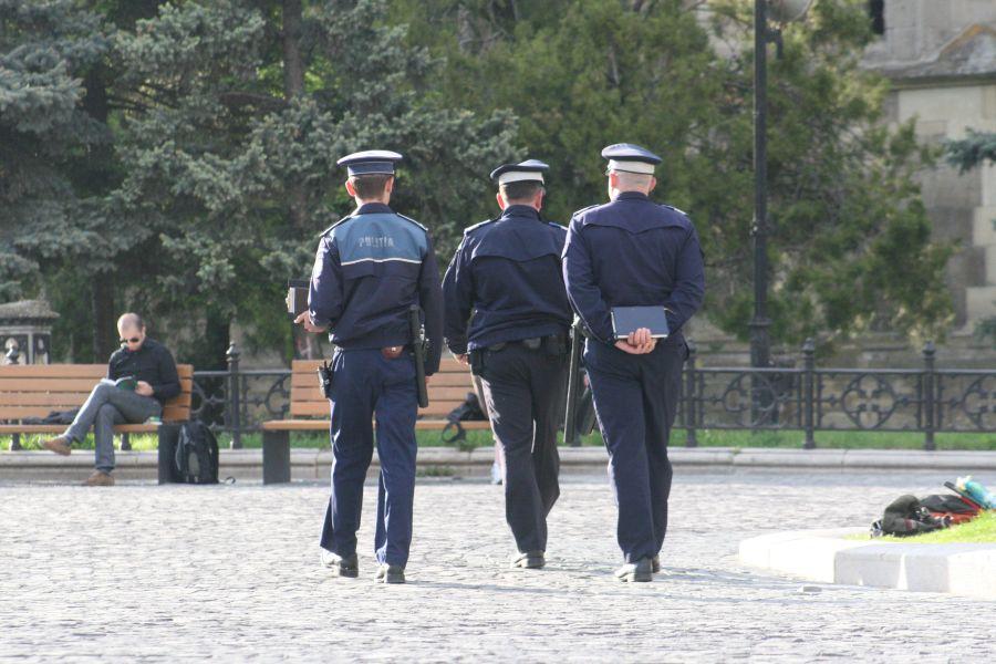 politisti, patrulare 7883