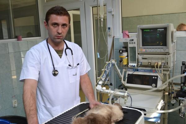 Răzvan Codea,   unul dintre medicii care a contribuit la salvarea lui Alun.