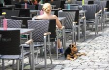 Conform noului regulament,   stăpânii de câini nu vor mai avea voie să se plimbe cu patrupedele în spații publice (Foto: Dan Bodea)