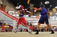 """Turneul internaţional de box """"Centura Transilvaniei"""" începe joi,   la mall-ul din cartierul Gheorgheni / Foto: Dan Bodea"""