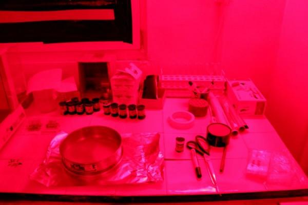 Majoritatea experimentelor au loc în camere obscure/Foto: Dan Bodea