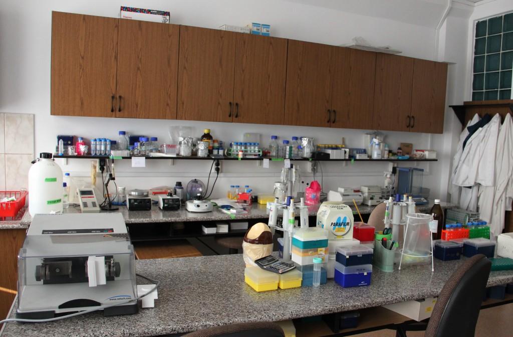 Centrul de Biologie Moleculară / Foto: Dan Bodea