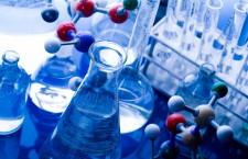 Zilele porților deschise la Institutul de Cercetări Experimentale în Bio-Nano-Științe