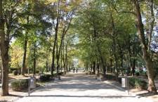 """Parcul sportiv """"Iuliu Haţieganu"""" a fost modernizat în baza unui proiect în valoare de aproape 5,  8 milioane de euro / Foto: Dan Bodea"""