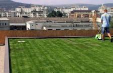 O companie clujeană cercetează,   în premieră,   soluții pentru amenajarea acoperișului verde adaptat climei din România