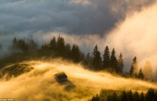 Ceața aurie,   Munții Rodnei / Foto: Ovidiu Lazăr