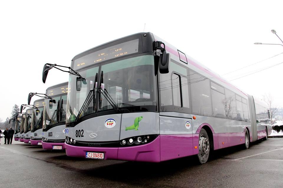 autobuze mov 3