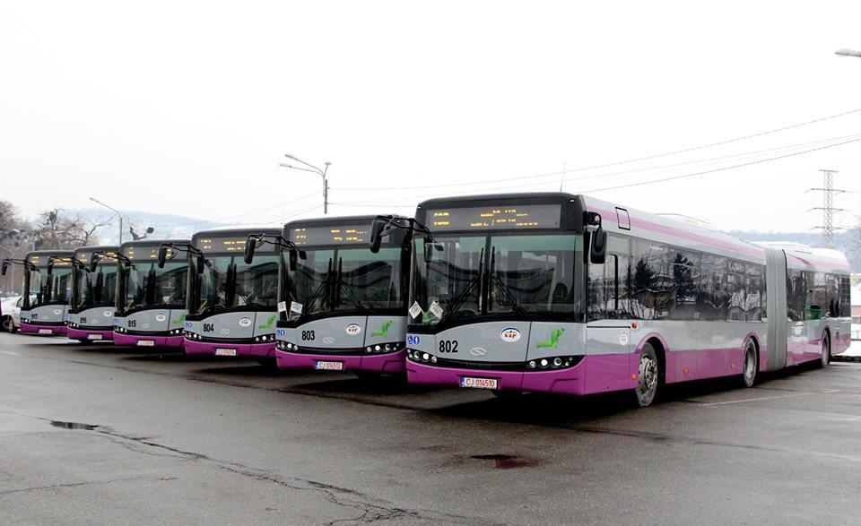 autobuze mov
