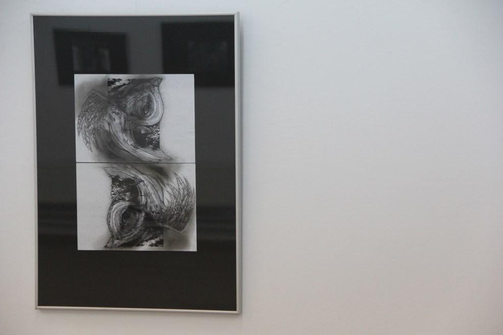 Pasărea-oglindă de Alexandra Iuga/Foto: Dan Bodea