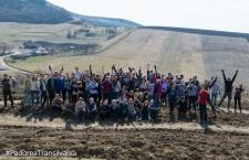 Peste 1.500 de voluntari au participat la Plantarea Pădurii Transilvania (P)