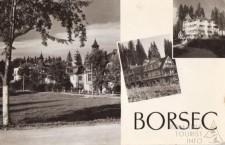 Vedere alb-negru,   pe care părinții sau buncii noștrii o trimiteau cu bucurie,   acasă din stațiunea Borsec.