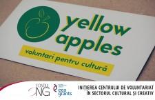 Yellow Apples,   primul centru pentru voluntariat în cultură din Cluj-Napoca