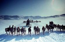 """Cuvântul """"Alaska"""" este forma modernă a termenului """"Alaxsxaq"""",   din limba eschimoşilor,   care înseamnă """"pământul spre care se îndreaptă marea""""."""