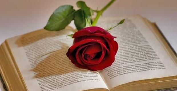 O tradiţie catalană,   datând din Evul Mediu,   spune că în ziua de Sant Jordi,   bărbaţilor li se dăruiesc cărţi,   iar femeilor,   trandafiri roşii.