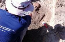 IICCMER continuă investigaţiile pentru căutarea,   descoperirea şi deshumarea deţinuţilor politici morţi în lagărul de muncă de la Periprava