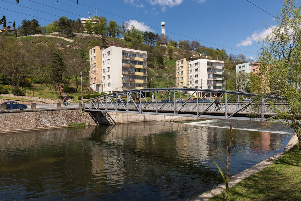 Podul Elisabeta