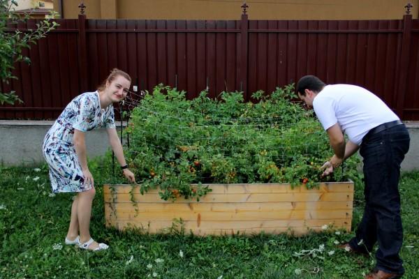 În momentele în care decid să ia o pauză de la lumea informaticii,   cei doi IT-iști se ocupă de o altă mare pasiune: grădinăritul (Foto: Dan Bodea)