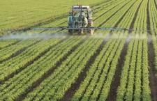 """Sociologul Traian Vedinaş,   specialist în sociologie rurală: """"Ministerul Agriculturii este înstrăinat de fenomenul dezvoltării rurale româneşti"""""""
