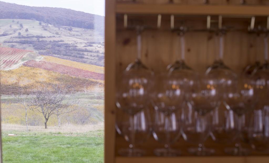 Dealurile din zona Batșs văzute din Wine Lodge Liliac / Foto: Vakarcs Lorand