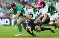 """""""Stejarii"""" au fost depășiți clar de Irlanda, în cel de al doilea meci de la Cupa Mondială de rugby din Anglia"""