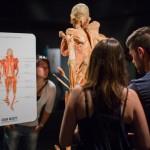 """Reduceri pentru studenții mediciniști în weekend-ul acesta la expoziția """"OUR BODY: Universul Interior"""""""
