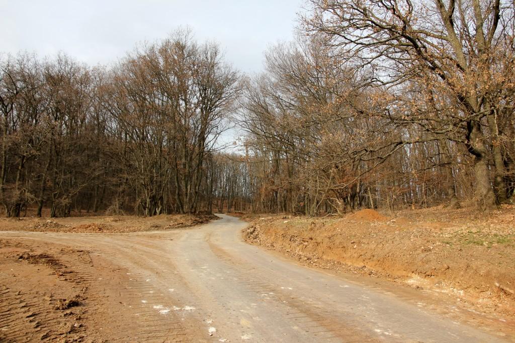 După aproximativ 4 km,   autostrada se oprește subit într-o pădure/ Foto: Dan Bodea