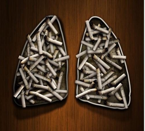 12_Cigarette Packs