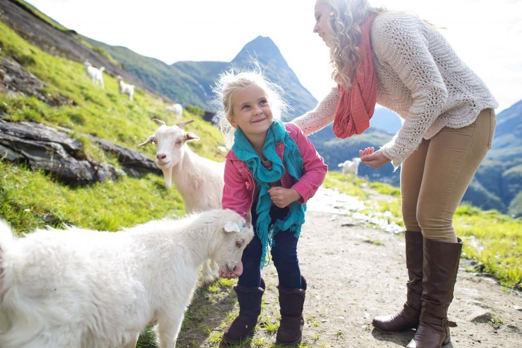 Dacă în cultura noastră copiii sunt învăţaţi să îşi respecte părinţii, în cultura scandinavă este tocmai invers: părinţii sunt cei care îşi respectă mai mult copiii. Îi lasă să se descurce în diverse situaţii de la vârste mici, îi îndeamnă să îşi exprime opiniile proprii şi caută să le dezvolte încrederea în sine şi personalitatea. Ţările nordice apar mereu pe primele locuri în topul celor mai bune sisteme de educaţie din lume.
