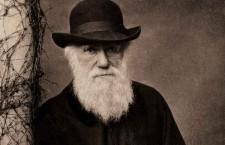 Darwin Day este celebrată pe 12 februarie, ziua în care s-a născut Charles Darwin, fiind aleasă ca reper mondial pentru a celebra ştiinţa şi progresul prin ştiinţă.