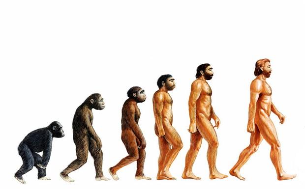 Teoria evoluţiei are un rol important în ştiinţă,   nu numai datorită faptului că explică organizarea biologică,   dar realizează legături între numeroasele domenii ştiinţifice. Ea armonizează domeniile ştiinţifice,   constituind un nod important în pânza cunoaşterii umane.