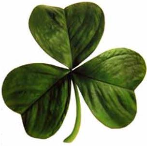 Culoarea verde, prezentă peste tot, în hainele şi accesoriile purtate în ziua Sfântului Patrick, este culoarea primului steag irlandez, iar trifoiul este simbolul acestei zile.