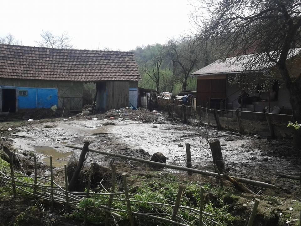 inundatii jichis
