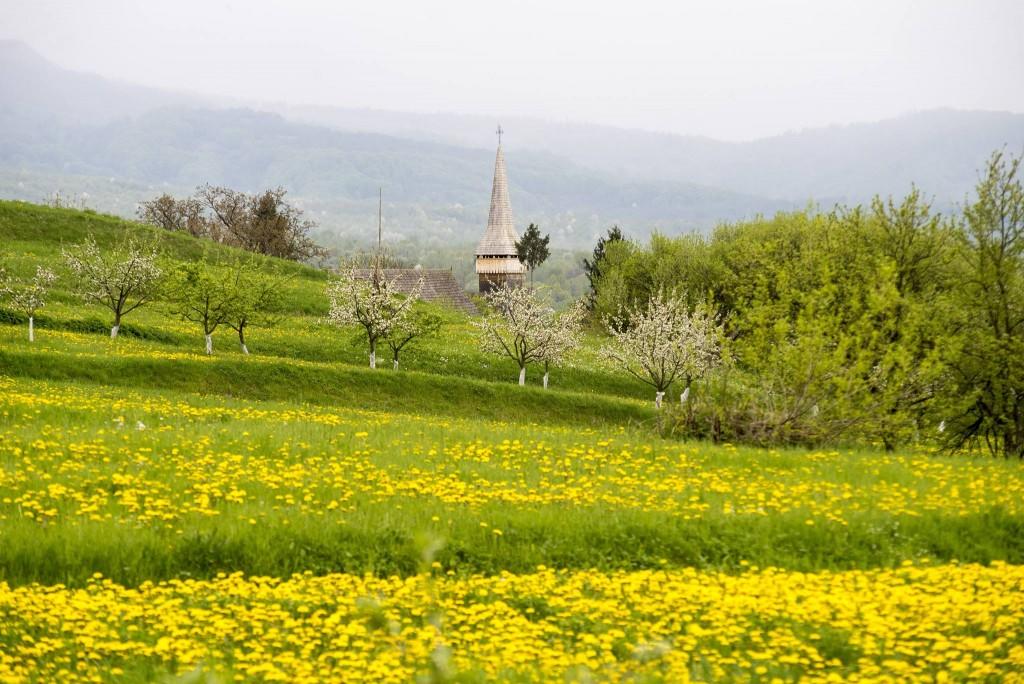 Peisaj de primăvară tipic Maramureșului,   în imagine,   o pajiște din Hoteni | Foto: Vakarcs Loránd