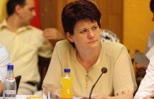 Condamnare de la ÎCCJ pentru Anna Horvath, fost viceprimar al Clujului
