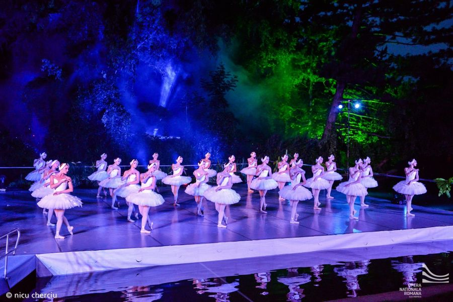 """""""Lacul Lebedelor""""/Foto: Nicu Cherciu/Opera Națională Română din Cluj"""
