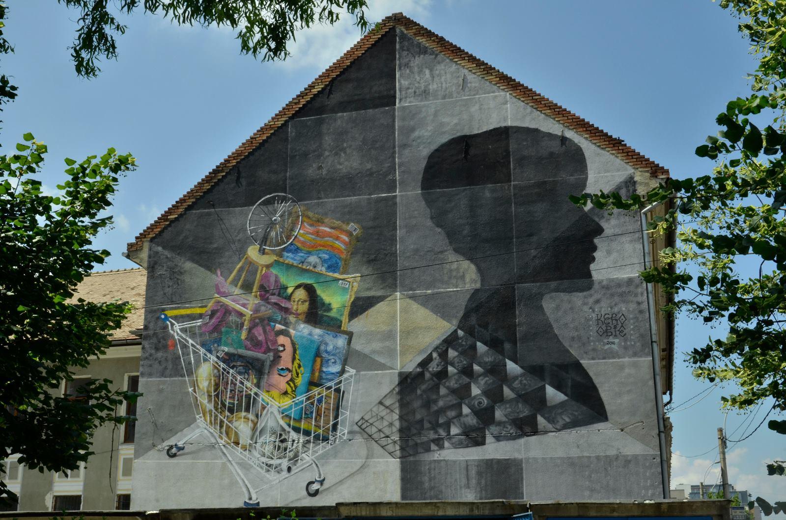 Singurul mural care există în Cluj a fost realizat anul trecut prin intermediul aceleiași platforme de finanțare/Foto: Kero