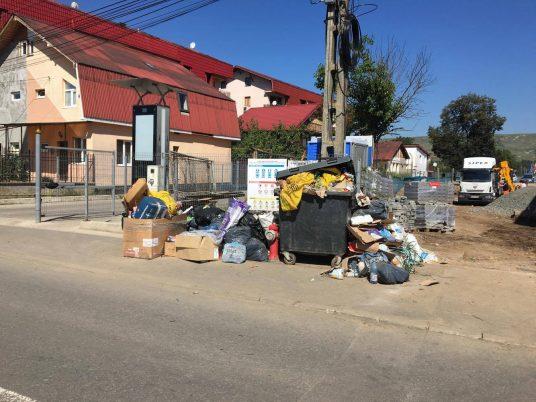 La doar 50 de metri de Primăria Florești, în sptele instituției, gunoaiele întâmpină plătitorii de taxe și impozite