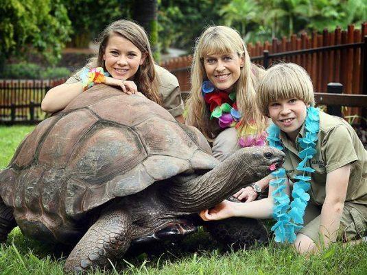 Terri Irwin nu a mai avut nicio altă relaţie după moartea lui Steve. S-a ocupat numai de proiectele lor comune,   de Australia Zoo şi de cei doi copii,   Bindi şi Robert.