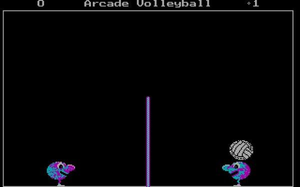 Arcade Volleyball,   unul dintre puținele jocuri video ale anilor '90.