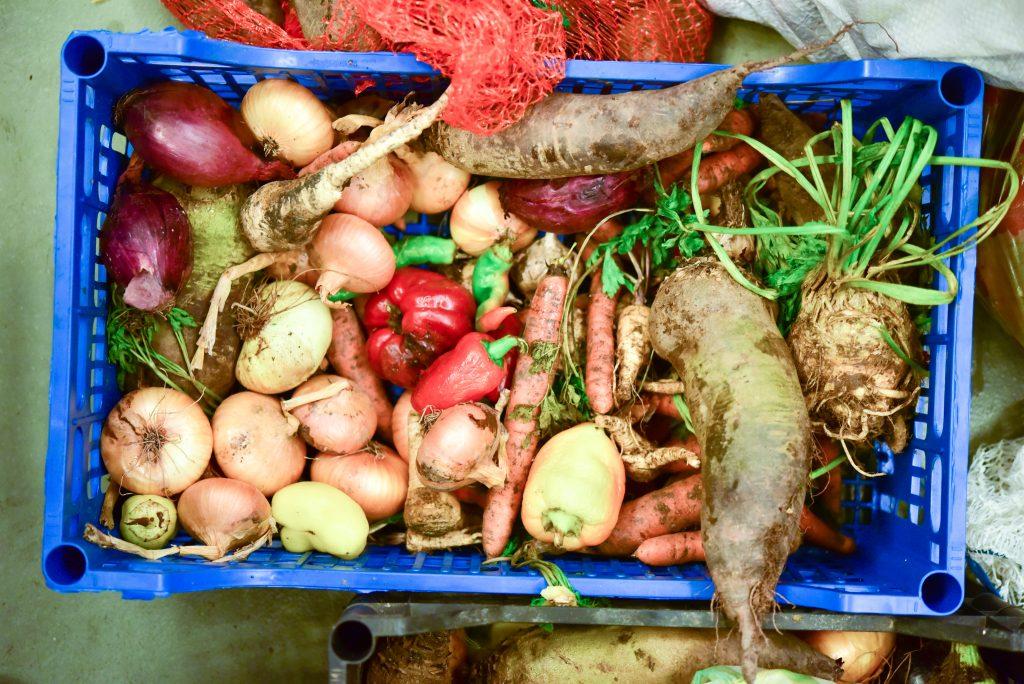 legume-salvate-din-piete