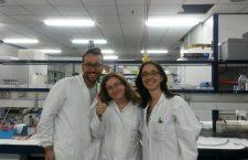 Maria Stanciu (foto mijloc), lucrând în laboratorul de Toxicologie din cadrul Universităţii din Valencia/ Foto: arhiva personală