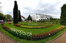 Grădina Botanică din Cluj-Napoca/Foto: Dan Bodea