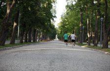 183,08 milioane Euro pentru dezvoltarea urbană a municipiilor reşedinţă de judeţ din Transilvania de Nord